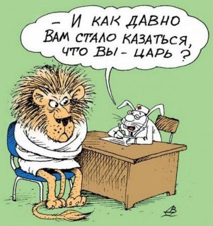 Веселые картинки))))