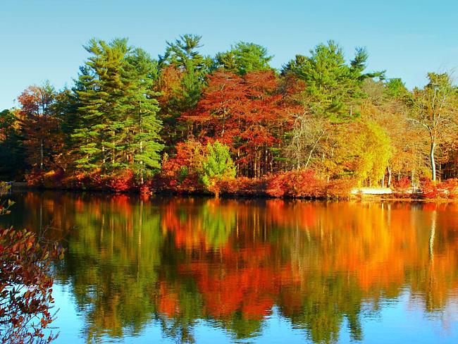 Осень моими глазами