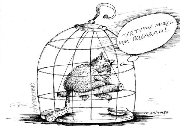 Подборка карикатур про кота