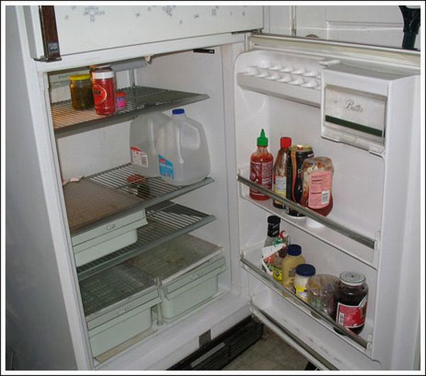 Холодильники холостяков