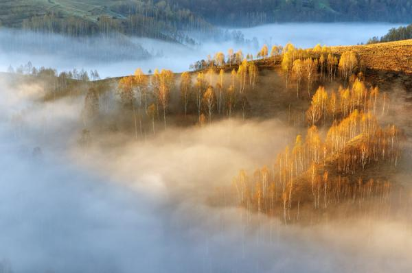 Потрясающие фотографии природы от Cornel Pufan.