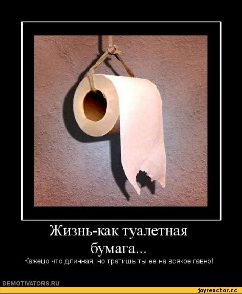 Туалетная жизнь