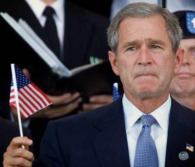 Жаба на Буша