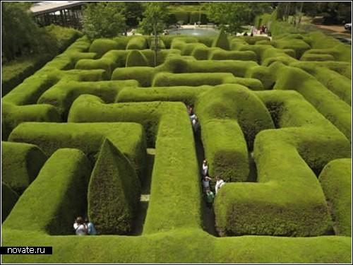 Лабиринты из растительности