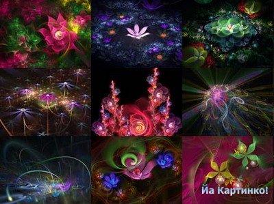 3-d цветы из фотошопа (1280х1024)