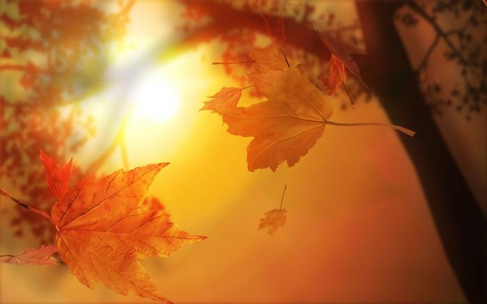 Лето-осень...