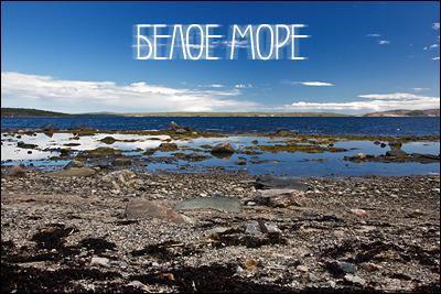 Белое Море. Мурманская область