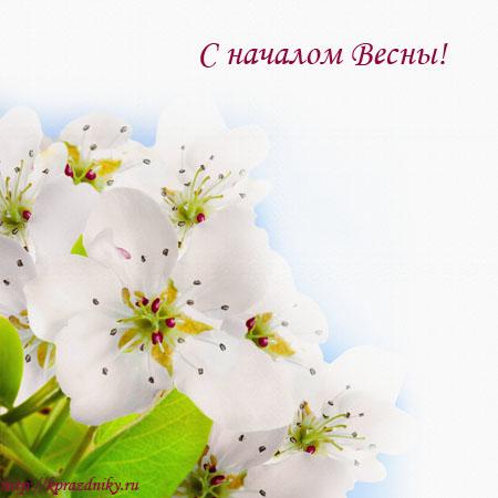 С началом весны!