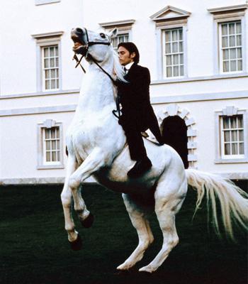 Свадебные кони для принцесс