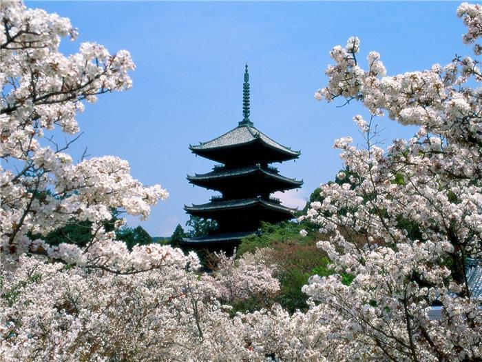Япония (1600х1200)